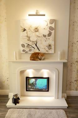 The Grove Luxury Cat Hotel Cat Hotel in Lichfield Staffordshire